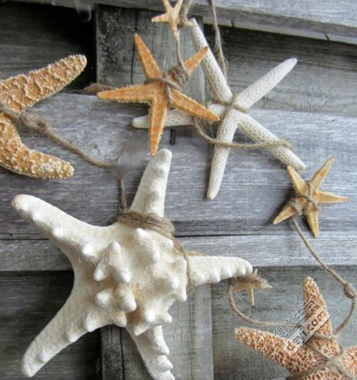 用海边捡来的贝壳DIY创意家居